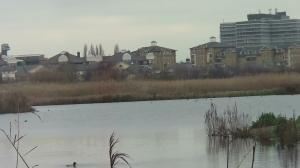 London wetland Centre