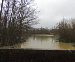 One of the flooded small lakes near the visitor centre