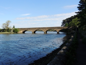 Duchess Bridge River Aln