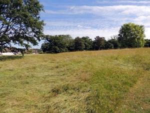 Eltham Park