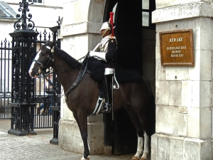 Mounted guard from Blues and Royals