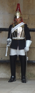Dismounted guard from Blues and Royals