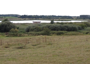 Looking from Winn Hill over Island Mere