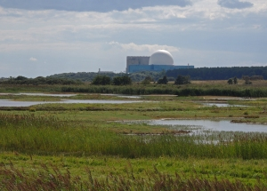 Looking over North Scrape towards Sizewell Power station