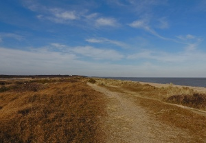Coastal sand Dunes at Minsmere