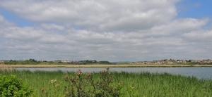 Radipole RSPB reserve