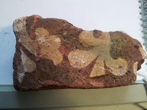 14th century floor tile from site