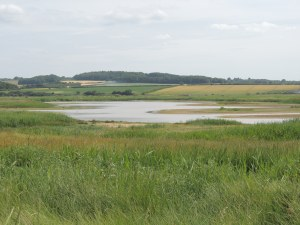 Cley Marshes