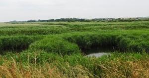 Titchwell Marsh