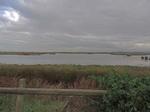 Oare Marshes