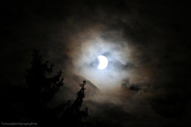 Moon 008