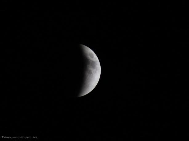 Moon 010