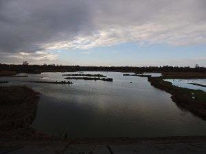 Flooded grazing Marsh