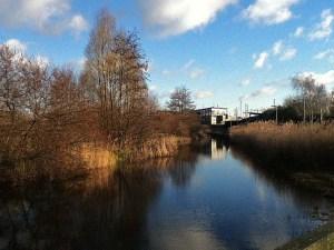 Greenwich Peninsular Ecology Park