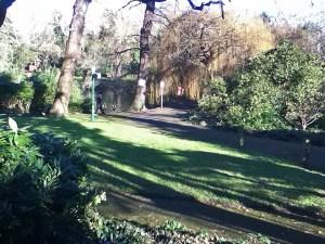 Tarn Park