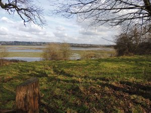 RSPB Pulborough Brooks in the Arun Valley
