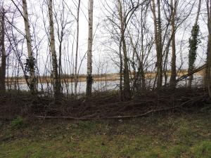 Sheltered Lagoon