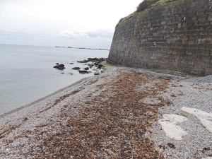 Beach and Rocks below Nothe Castle