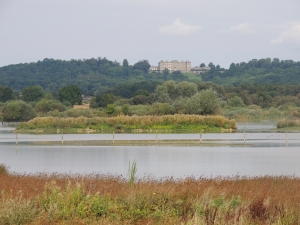 Rutland Water Nature Reserve