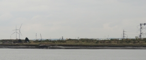 Swanscombe Marsh