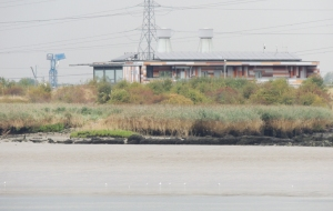 RSPB reserve centre at Rainham Marshes