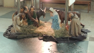 The Christmas Crib