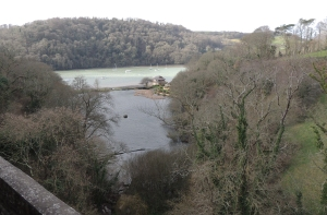 Emerging beside the River Dart