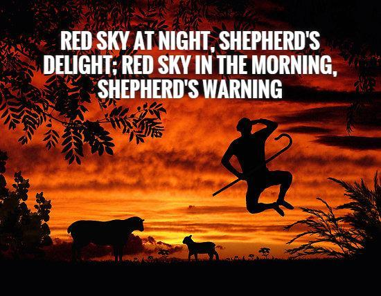 red-sky-at-night-shepherds-delight-red-sky-in-the-morning-shepherds-warning-quote-1.jpg