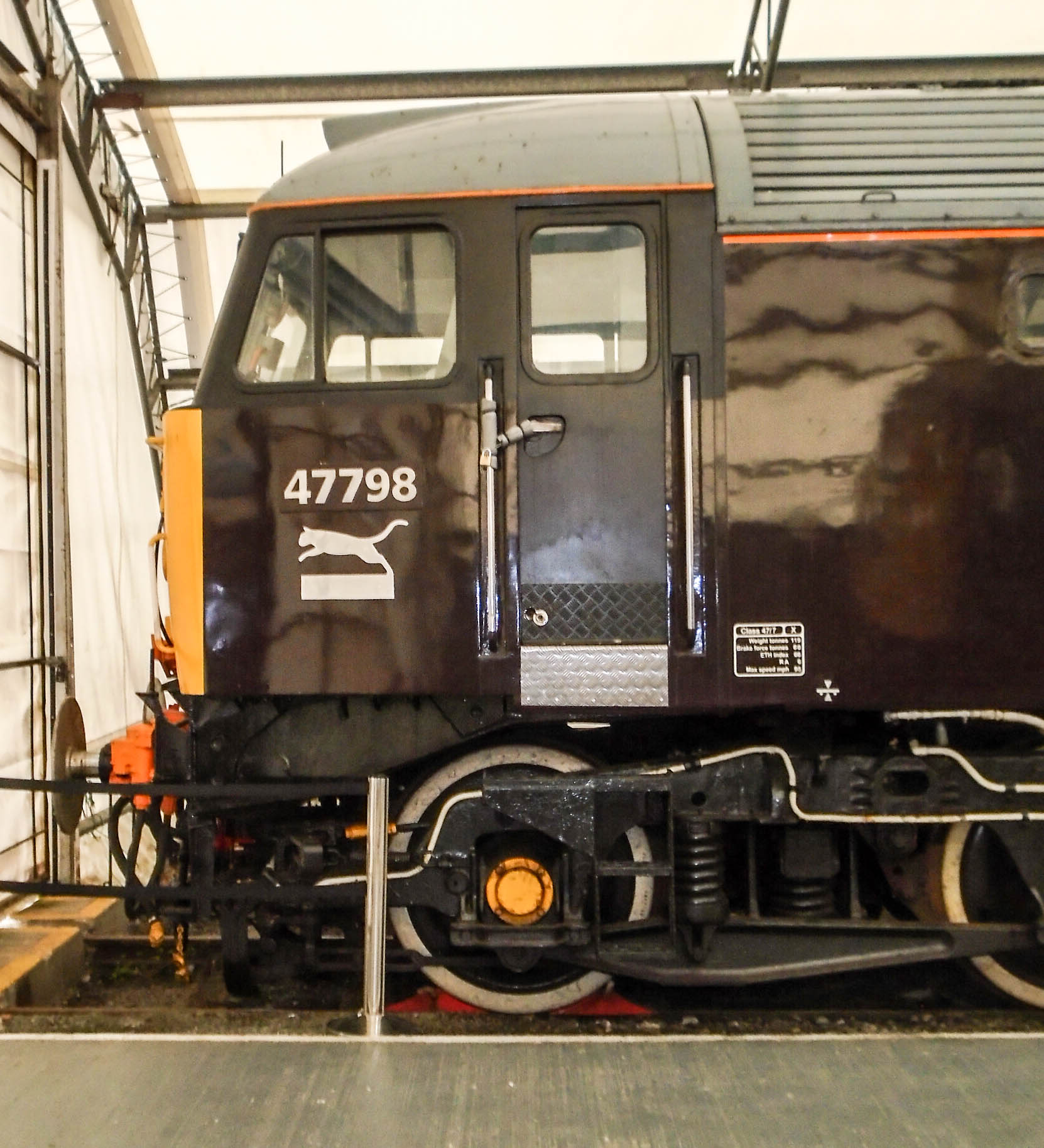 DSC00511-4