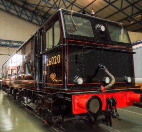 DSC00611-15